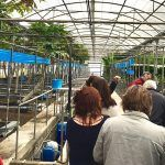 Agricultores de La Gomera participan en un tour de tecnología agroalimentaria