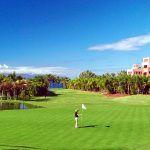 Ampliación del campo de golf y desarrollo la Urbanización «Abama» de interés estratégico