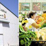 Nuevas ayudas para la mejora de los mercados del agricultor