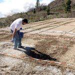 Técnica de la biofumigación como alternativa a la desinfección química del suelo