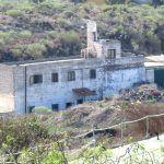 El Cabildo responde a Podemos sobre los perros rescatados en Arona y Guimar