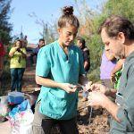 Expertos mundiales participan en los cursos de Medicina Zoológica organizados por Oasis Park