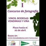 Concurso de fotografía 'Vinos, bodegas, vendimias y viñas' Vinos de Abona concluye el 21 de abril