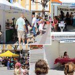 La Primera Feria del Libro reúne a escritores, libreros y amantes de la lectura en El Médano