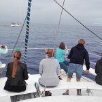 Agentes de viajes alemanes conocen la oferta turística de Tenerife