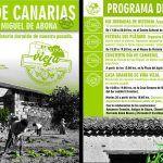 San Miguel de Abona comienza el miércoles con los festejos por el Día de Canarias