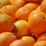 Investigan a dos hombres acusados de un delito de hurto de 500 kg de naranja en Tacoronte