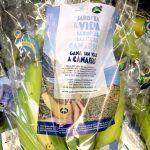 Plátano de Canarias e islas canarias se unen en una nueva promoción conjunta en la península