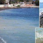 Una gran mancha y basura flotando en el agua de Los Tarajales
