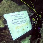 Loro Parque se une a la campaña mundial contra la basura marina