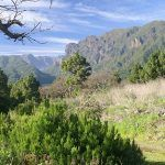 La Reserva de la Biosfera La Palma digitaliza su archivo