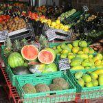Piden que la UE exija a los productores ecológicos de otros países lo mismo que a los canarios