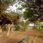 Adjudican las obras del primer parque canino de San Sebastián de La Gomera