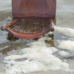 La crisis de las microalgas