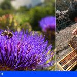 Se abre el XII Concurso de Mieles de Gran Canaria