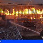 A disposición las solicitudes de daños en explotaciones agrícolas y ganaderas por el incendio de GC