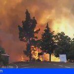 El Gobierno de Canarias asume la dirección del incendio de Gran Canaria
