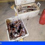 Incautan más de 90kgs de potas capturadas de forma ilegal en costas de Santa Cruz