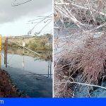 Ciudadanos denuncia vertidos de aguas fecales en el Polígono de Granadilla