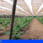 Un total de 801 agricultores y ganaderos se acogen a los fondos del Programa de Desarrollo Rural