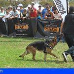 1.500 personas pasan por el  Parque del Sur de Maspalomas en la II Feria de Mascotas