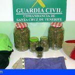 Detenido con 540,16 gramos de Marihuana en Los Llanos de Aridane
