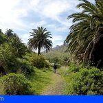 El Cabildo invertirá 1,8 millones de euros en los Parques Rurales de Anaga y Teno