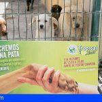 Tropical Limón lanza la campaña `Echemos una pata' en Tenerife contra el abandono de animales