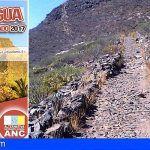 «Visita al Ecomuseo de la Piedra» en Arico