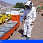 Destinan 8.000 euros a ayudas para las asociaciones de apicultores registradas en Gran Canaria