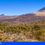 Los expertos coinciden en que el sector turístico debe contribuir a la conservación de los espacios naturales