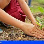 Quince personas reciben en Adeje un curso básico de jardinería