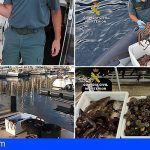Guardia Civil levanta numerosas actas en el litoral de La Palma por infracciones a la normativa de pesca