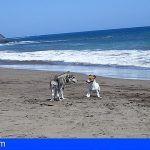 Fallece ahogado en la Playa Los Perros, Granadilla de Abona