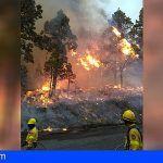 Tenerife impulsa el reconocimiento de la jubilación anticipada para los 'bomberos forestales' del operativo BRIFOR