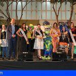 Granadilla de Abona elige el próximo fin de semana su Reina del Carnaval 2018