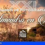 Entrega de trabajos del «XXI Concurso de Fotografía Almendro en Flor» hasta el 2 de marzo