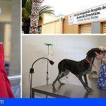 El Centro de Acogida de Animales de Adeje abrirá sus puertas al voluntariado