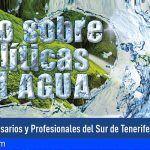 El CEST promueve un debate sobre la gestión de los recursos e infraestructuras hídricas en el Sur