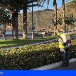 San Sebastián amplía el uso de tratamientos ecológicos en las zonas verdes de la capital