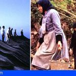 Se recuperan 17 bobinas de películas de los años 70 sobre actividades agrícolas en las islas