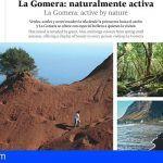 La Gomera llega a tres millones de pasajeros a través de las revistas de las principales aerolíneas europeas