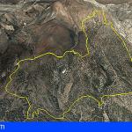 Controlado el incendio forestal de Granadilla, quedaron afectadas a unas 380 hectáreas