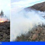La superficie afectada por el incendio ronda las 100 hectáreas de pinar y matorral