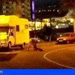 Usuarios de caravanas en Playa Paraíso descargan sus desechos en el alcantarillado