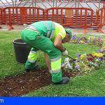 Sí se puede apoya las demandas del personal del servicio de Jardinería del Ayuntamiento de Arona