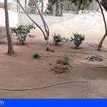 El Alcalde de Arona responde a las reivindicaciones de Grupasca Playa las Américas