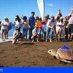 La tortuga 'Sardina' será seguida desde Gran Canaria por el mundo gracias a un dispositivo electrónico