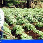 El Cabildo destina cerca de 400 mil euros al apoyo del sector primario en La Gomera