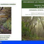 La Gomera acoge este viernes una jornada dedicada a la laurisilva